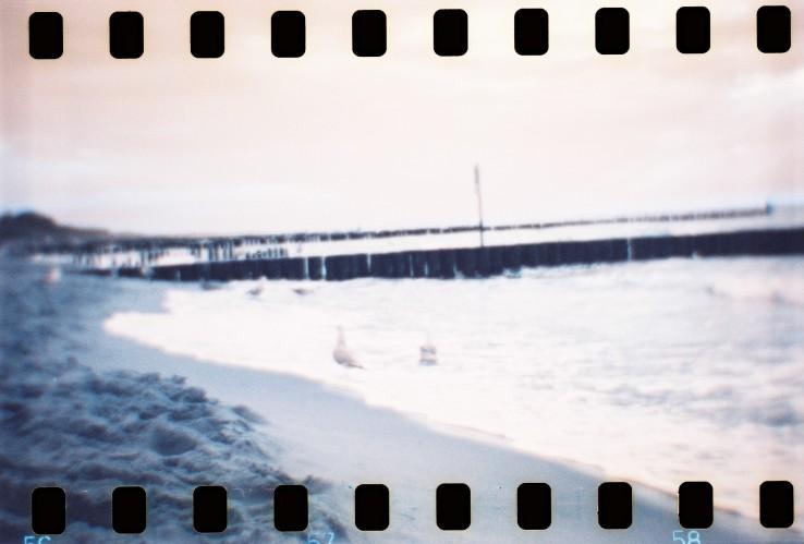 meer, möwen, film, analog, strand