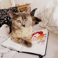 katze, skizzenbuch, buch, zeichnung, bett, brittisch kurzhaar, skizze
